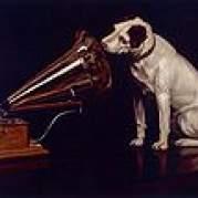 Victor Records, Музыкальный Портал α