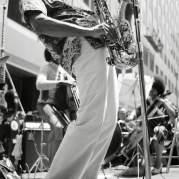 George Adams, Музыкальный Портал α