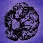 Обложка альбома De Laatste Sirtaki, Музыкальный Портал α