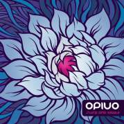 Обложка альбома Quante volte… ho contato le stelle, Музыкальный Портал α