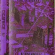 Обложка альбома Rhythms of Fire, Музыкальный Портал α