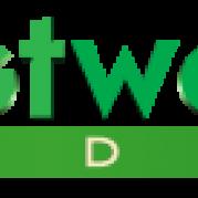Westwood Studios, Музыкальный Портал α